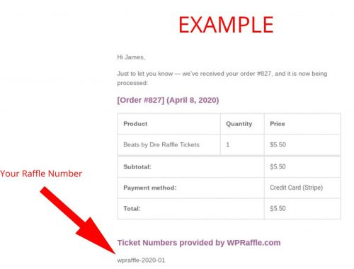 Raffle Ticket Number Example